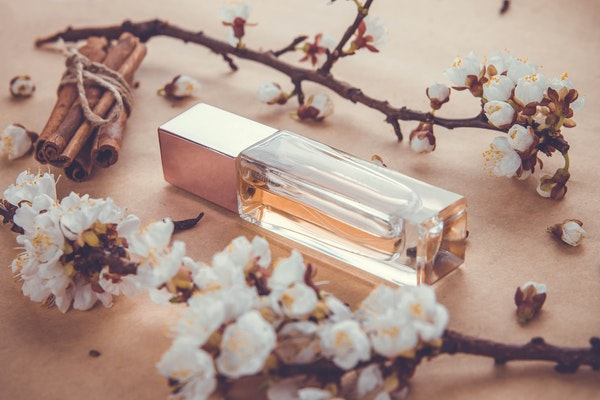The evolution of aromas from different eras
