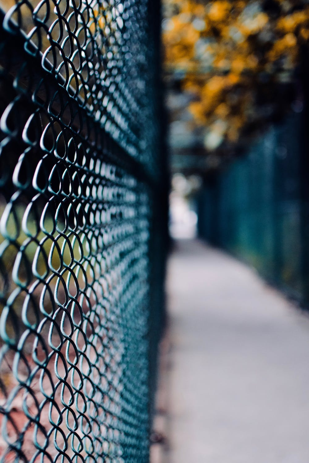 Everything You Need to Know About Security Fences