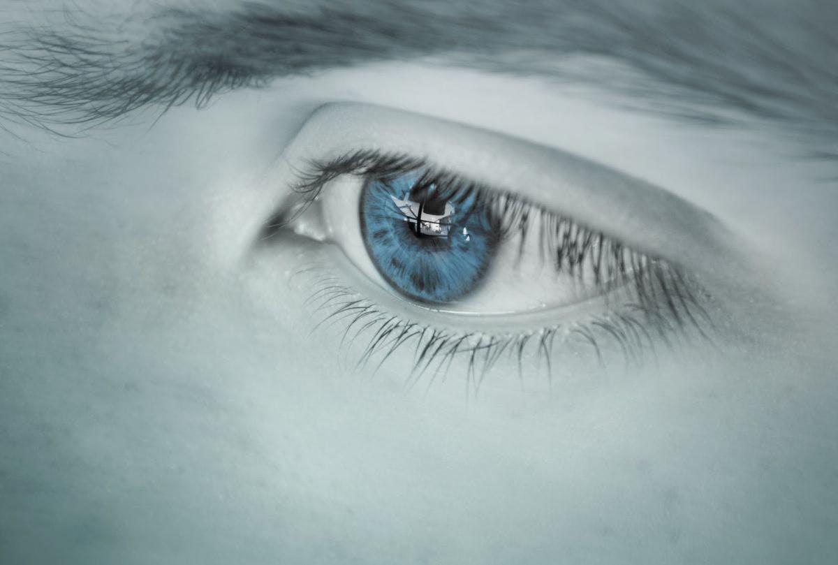 Biometrics: Essentials of Iris Scanners, Retina Scanners etc