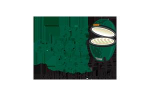 big green egg BBQ