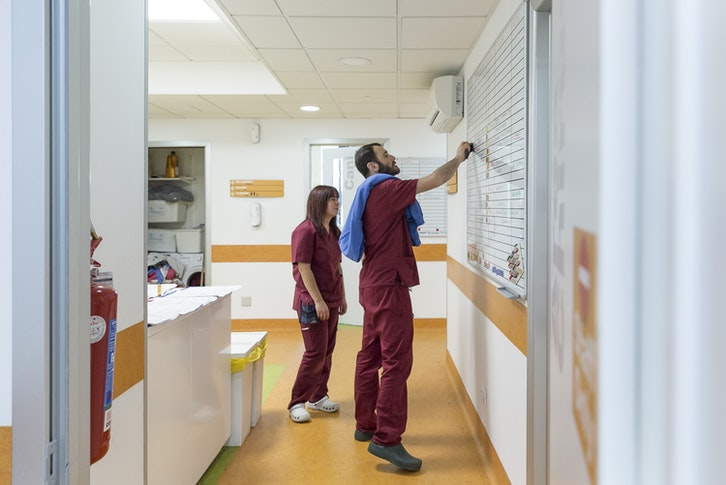 1558556991 clinica h24 vetm alessia manti89