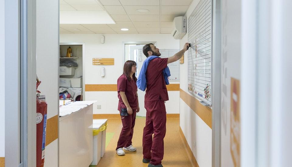 1587980346 clinica h24 vetm alessia manti89