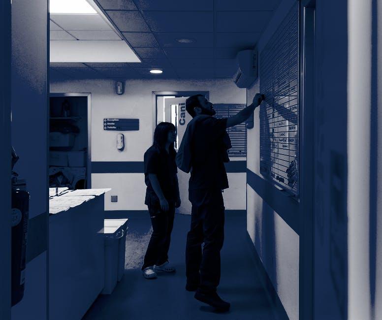1587980389 clinica h24 vetm alessia manti89