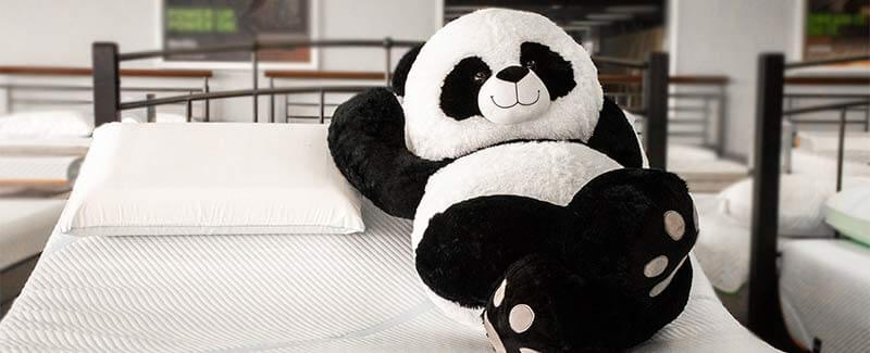 Panda mascot sitting in bed