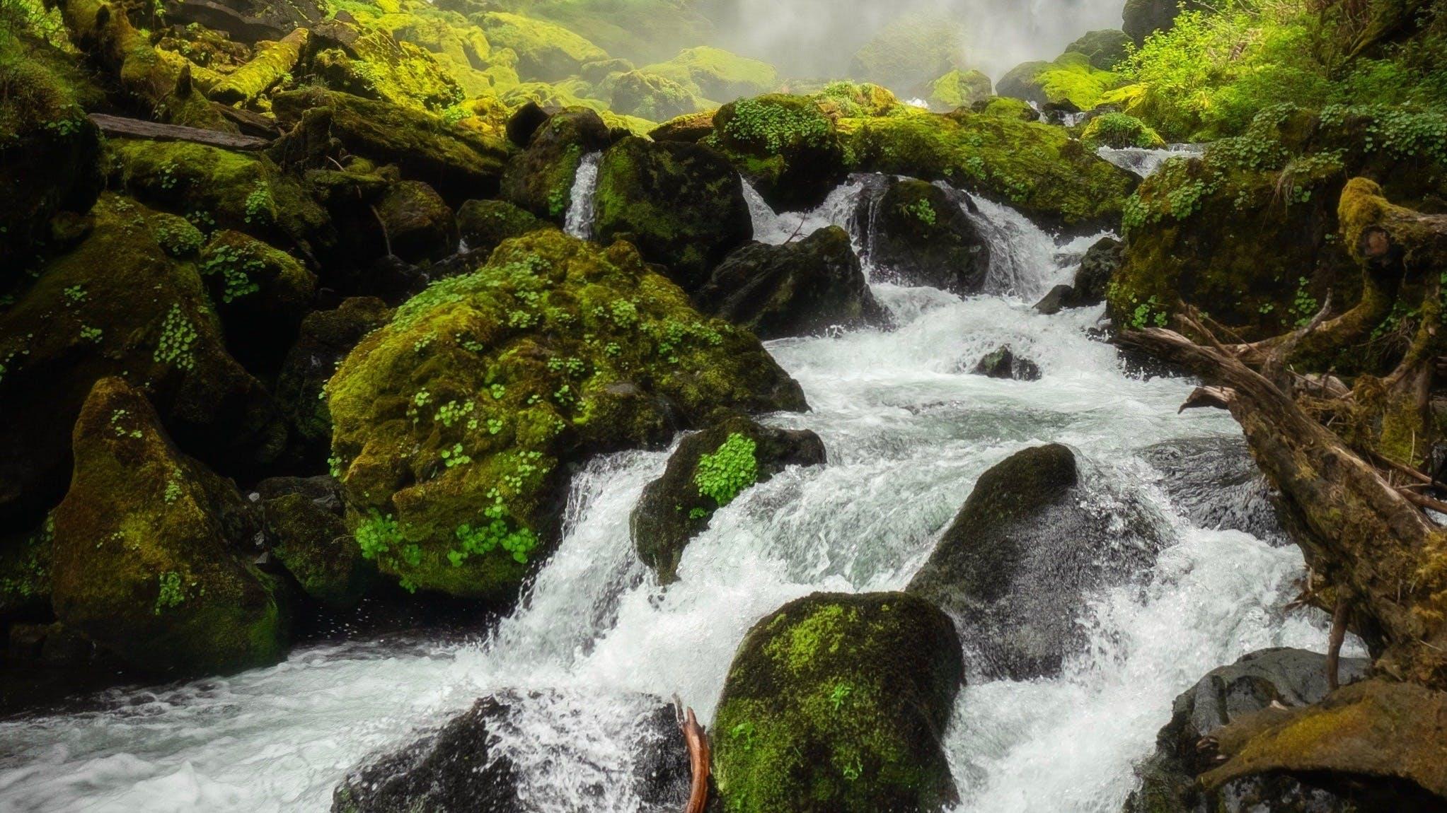 INFOHUB - Links aus Österreichs Flusswelten
