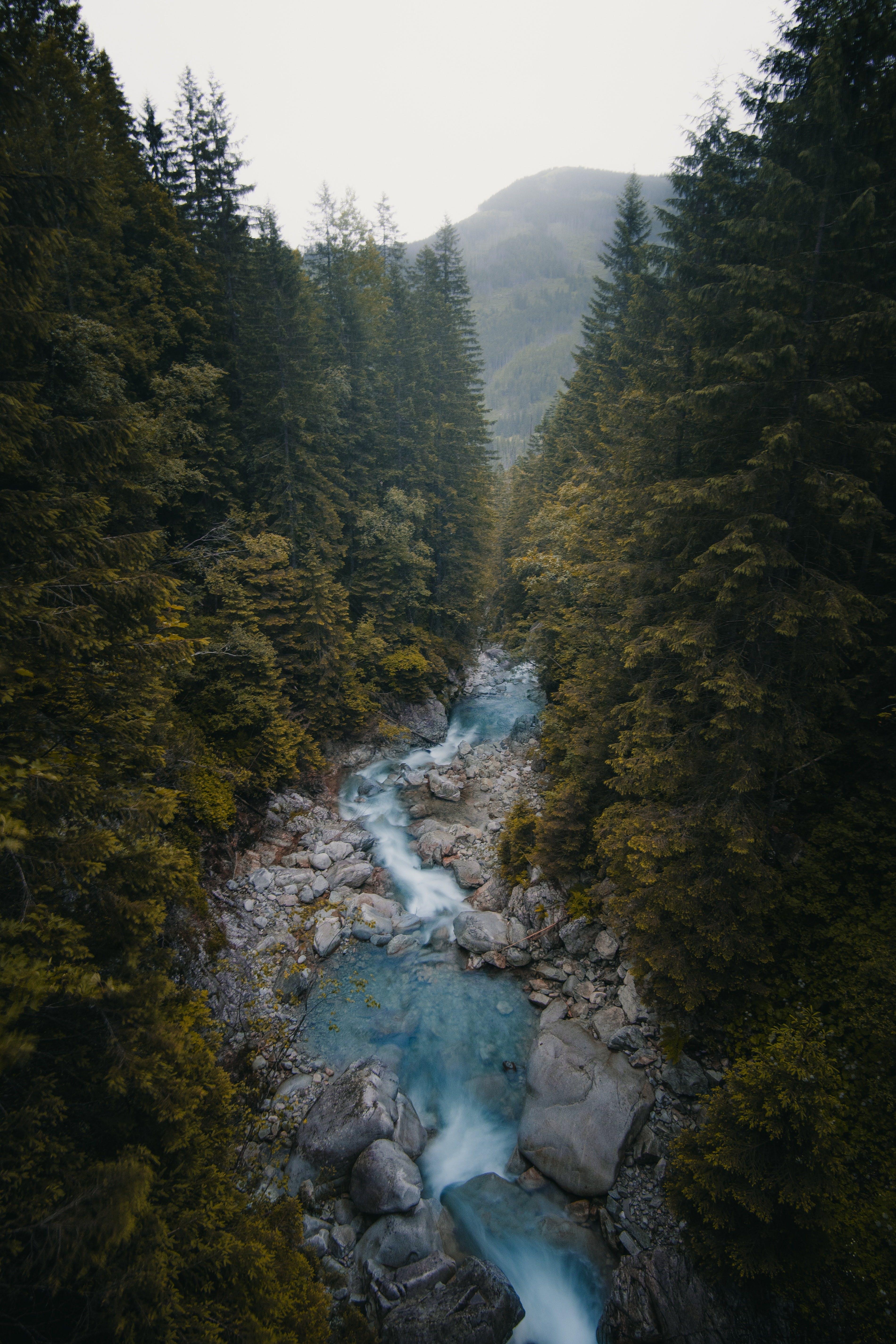 INFOHUB - Österreichs Flusswelten