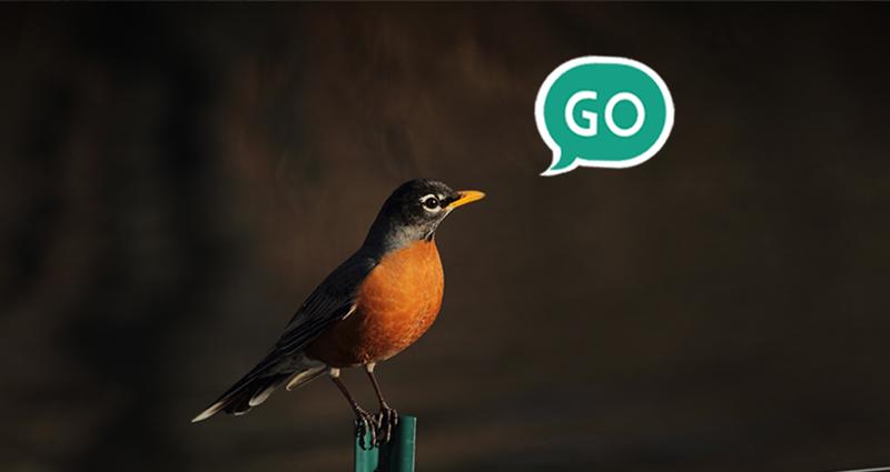 """e-mail marketing - ptak z zielonym dymkiem """"GO"""""""