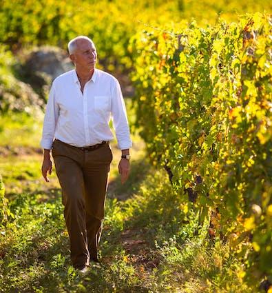 Dal 1982 Marco Pallanti è Enologo e Direttore Tecnico del Castello di Ama