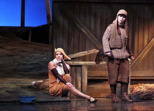 Příhody lišky Bystroušky, foto: Hana Smejkalová, Národní divadlo