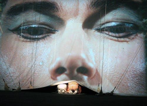 Laterna magika - Kouzelný cirkus - foto Petr Našic