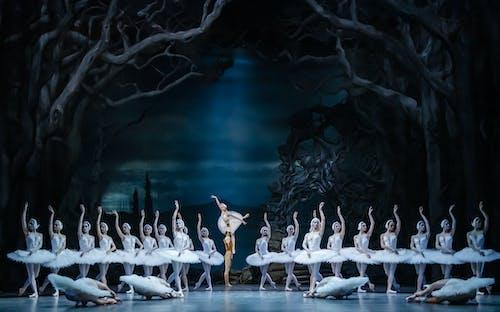 Labutí jezero - Patrik Holeček a Miho Ogimoto a soubor Baletu ND - Foto Sergej Gherciu