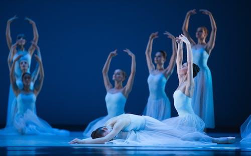 Balet Národního divadla – Timeless – Serenade – Foto: Pavel Hejný