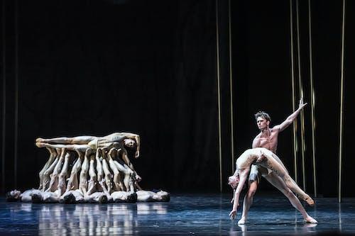 Balet Národního divadla – Timeless – Svěcení jara – Alina Nanu, Daniel Camargo, Patrik Holeček – Foto: Serghei Gherciu