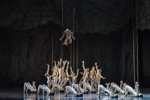 Balet Národního divadla – Timeless – Svěcení jara – Foto: Serghei Gherciu