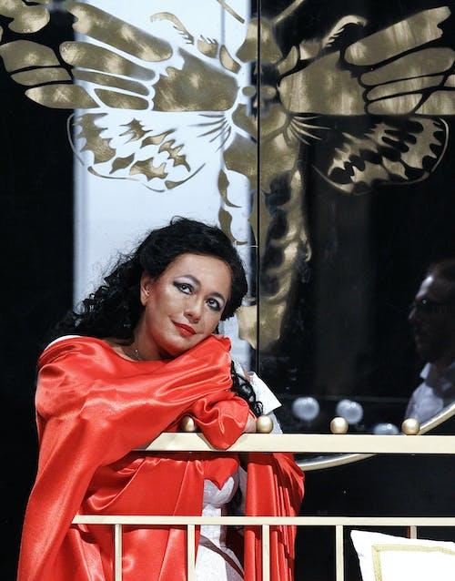 Opera ND - Maškarní ples | Anda-Louise Bogza - foto: Hana Smejkalová