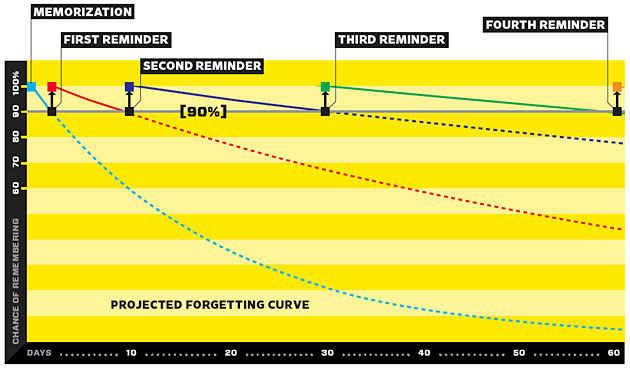 Krzywa zapominania - Wired