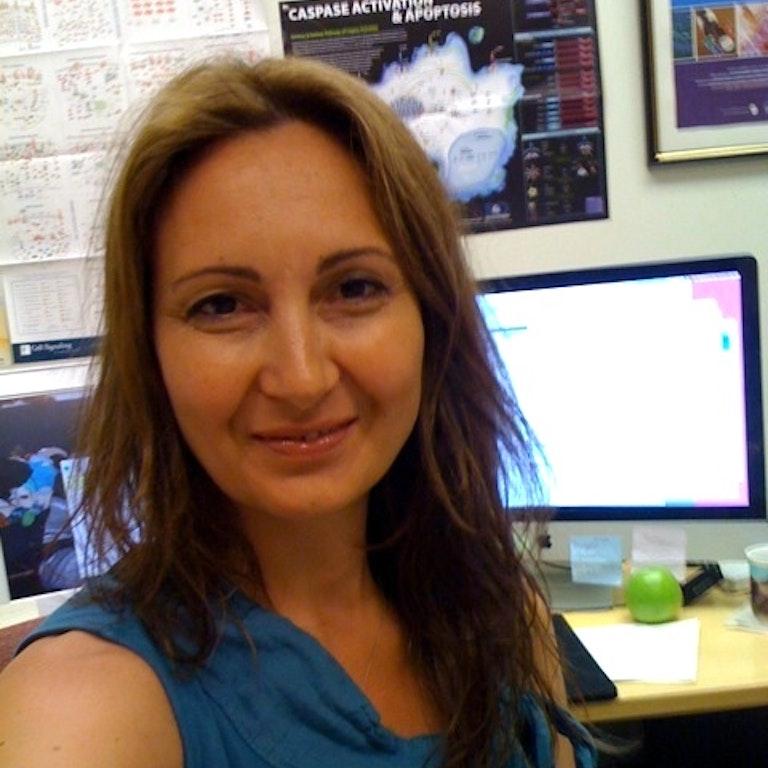 Maura Boldrini, M.D., Ph.D.