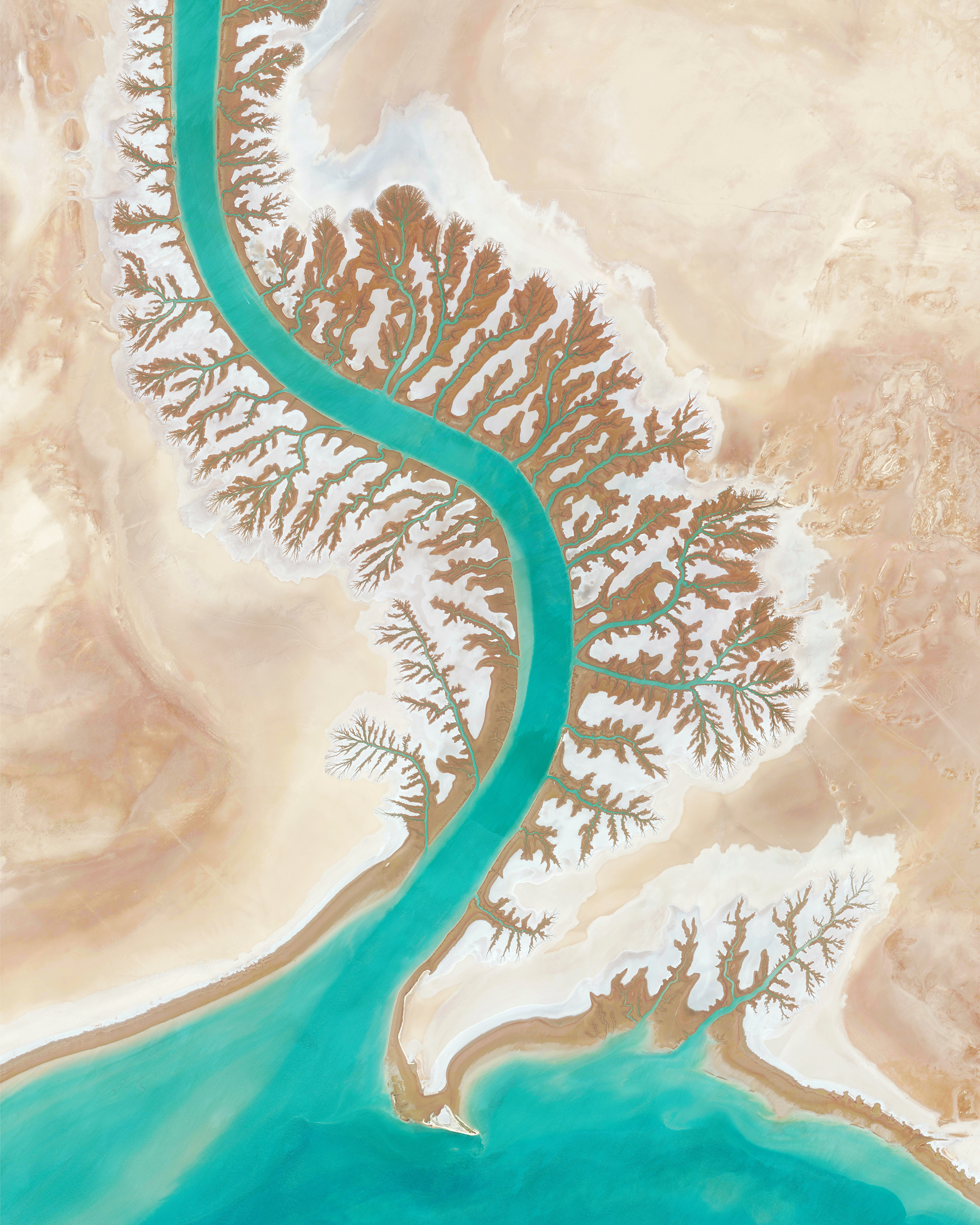 Shadegan Lagoon