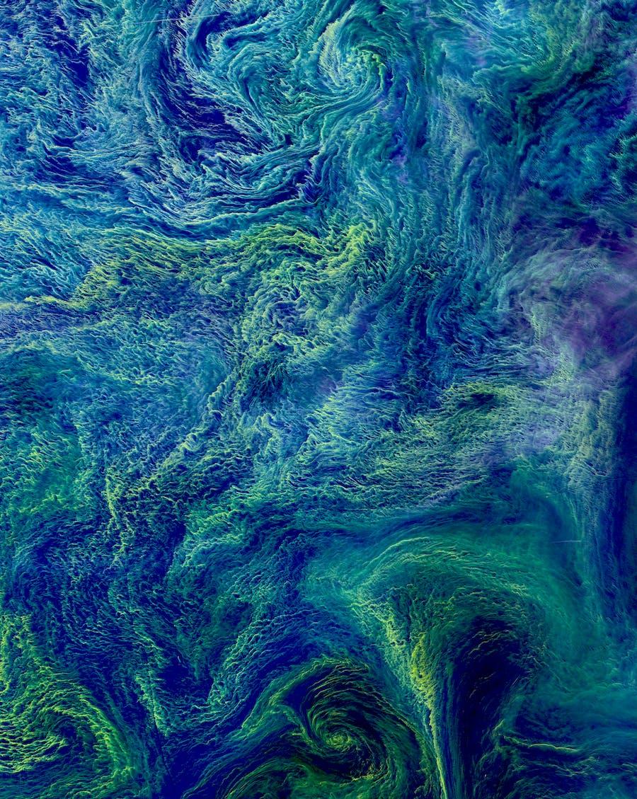Baltic Algae Bloom