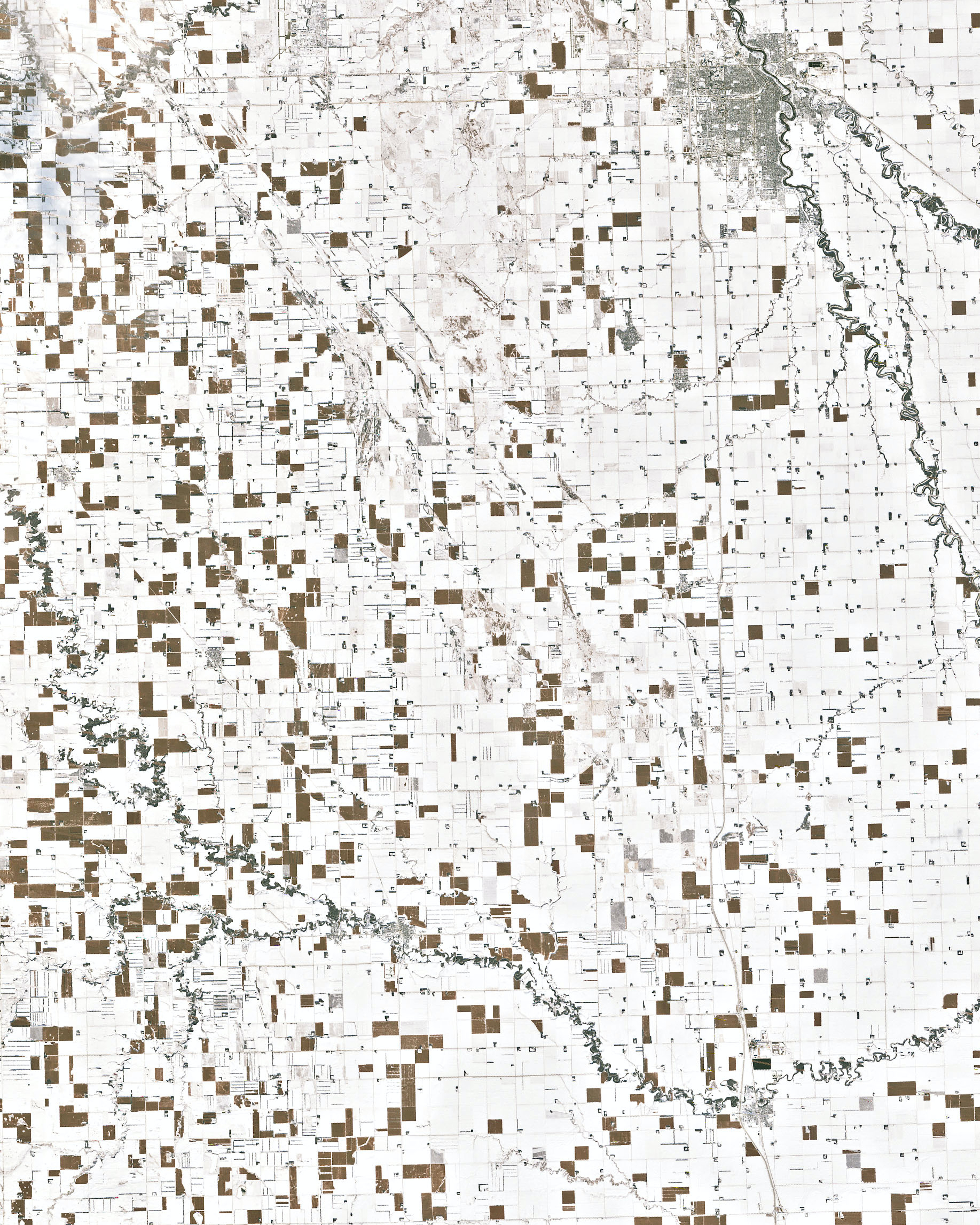 North Dakota Cornfields
