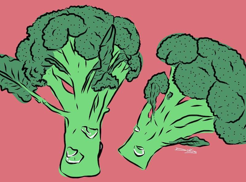wat is een obligatie? broccoli