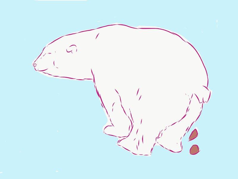 illustratie poepende ijsbeer
