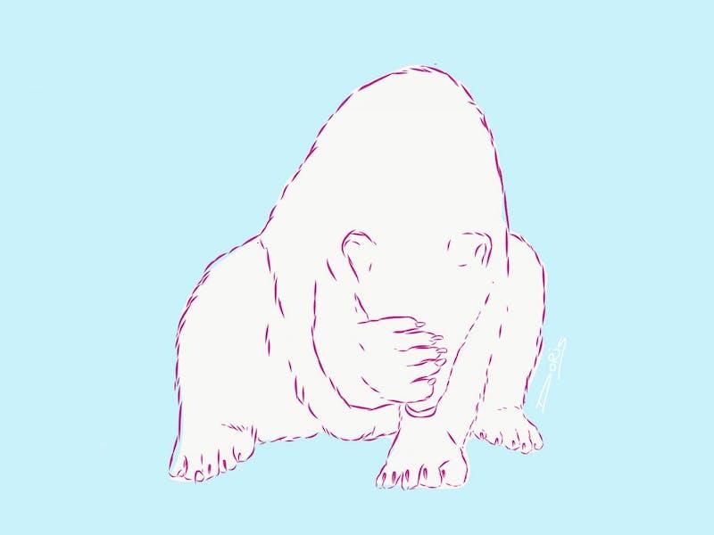 een beschaamde ijsbeer