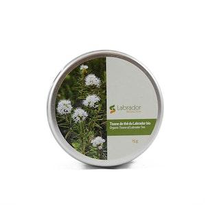 Tisane de thé du Labrador bio