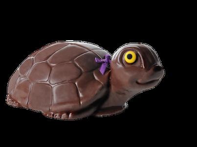 Tortue géante Chocolat Lulu