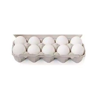 Douzaine d'oeufs blancs moyens