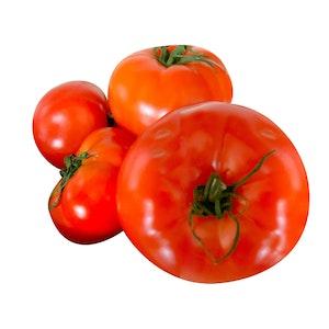 Tomate - Les Serres Arc-en-ciel
