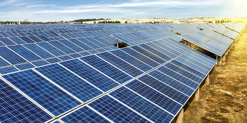 sun drenched solar farm in NSW
