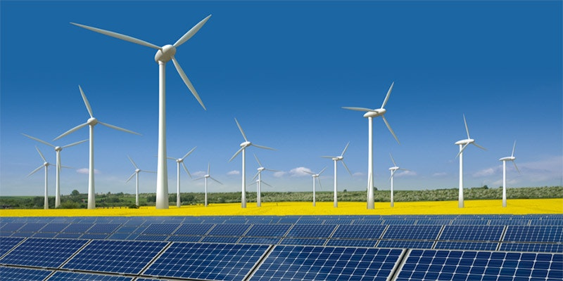 solar farm with wind turbines in daffodil field towards horizon