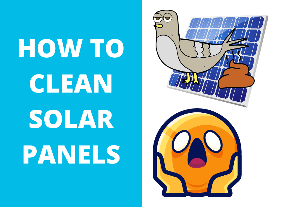 cleaning solar panels illustration of bird droppings on solar panel frustrated face