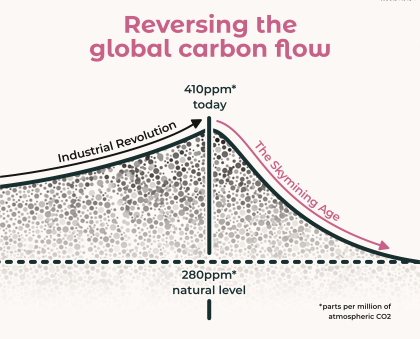 Reversing Carbon Flow