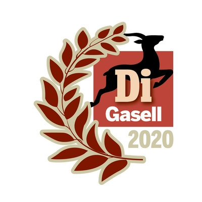 Blog post image for blog post with title Solidify - DI Gasell 2020!