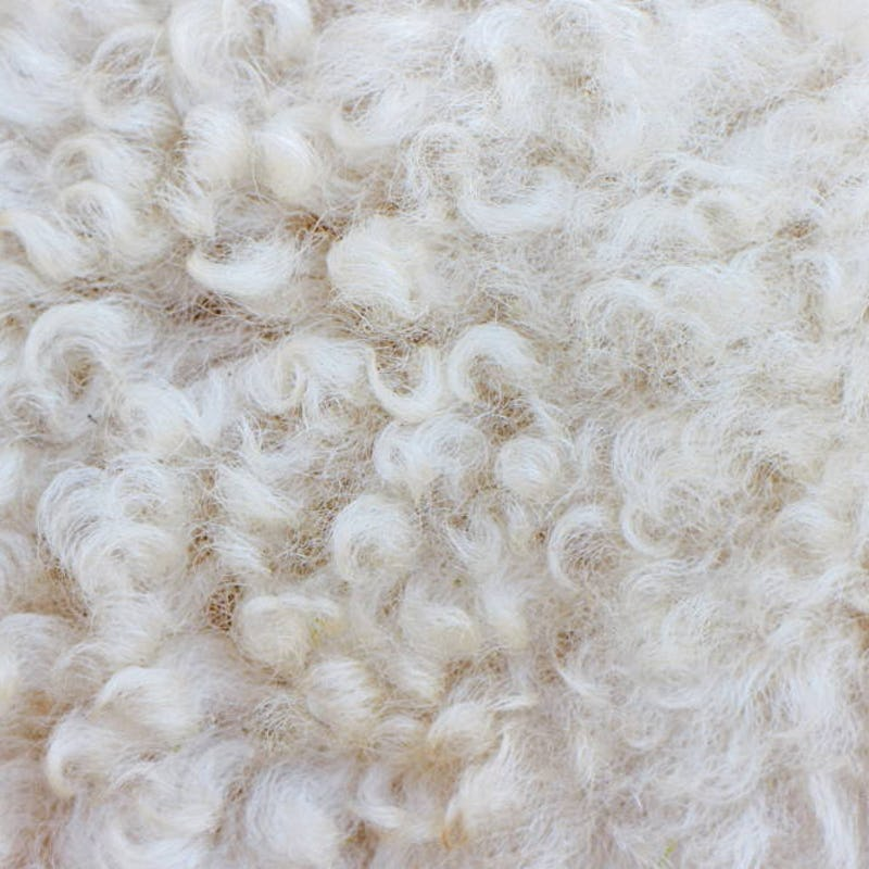 close up picture of wool