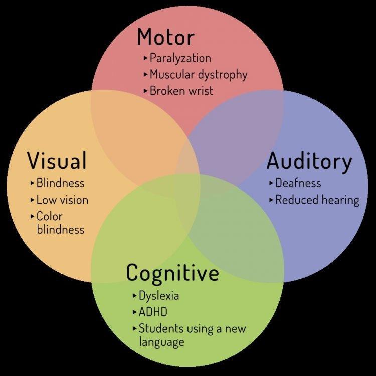 A venn diagram consisting of 4 circles: motor, visual, cognitive and auditory.