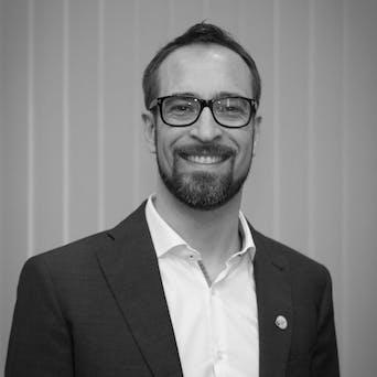 Gaudenz Stricker - Independent Consultant