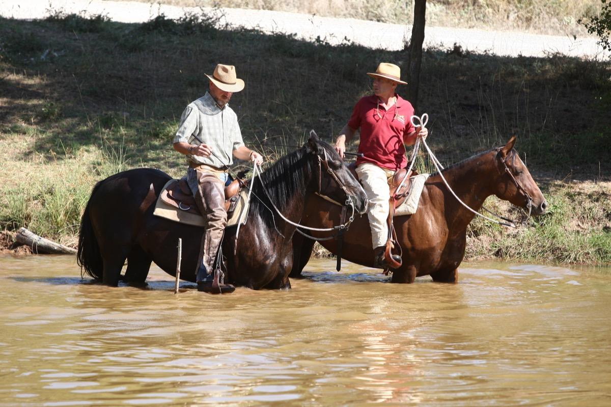 1582535628 corso natural western riding31
