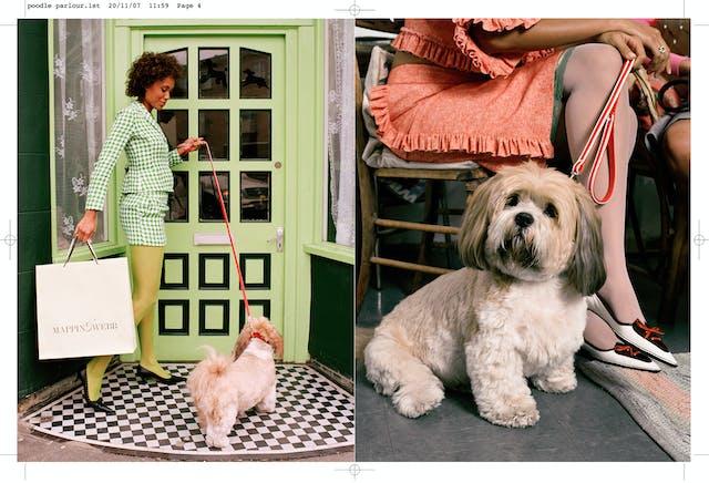 'Poodle Parlour' by Nancy Honey - Page: 4
