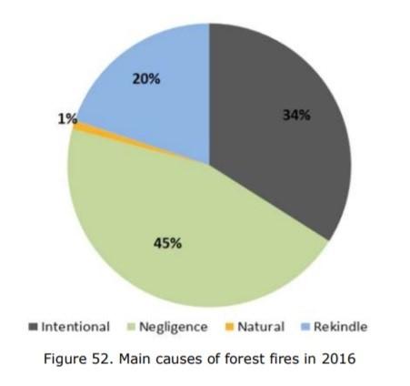 Gráfico com principais causas de incêndios florestais em 2016