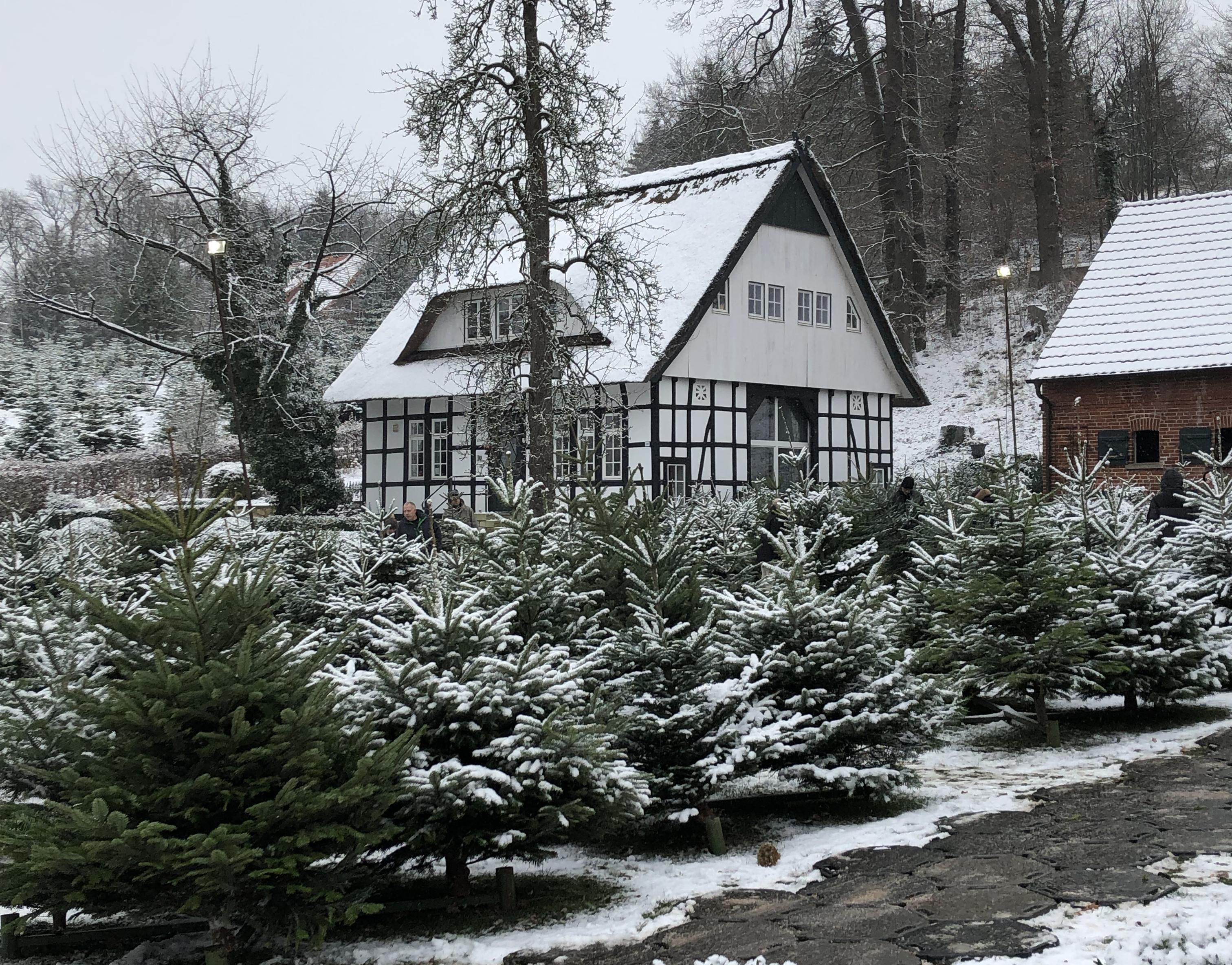 Siekmanns Hof im Winter