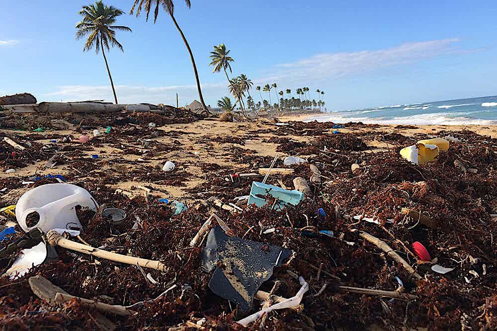 angeschwemmter Müll auf angeschwemmten strand