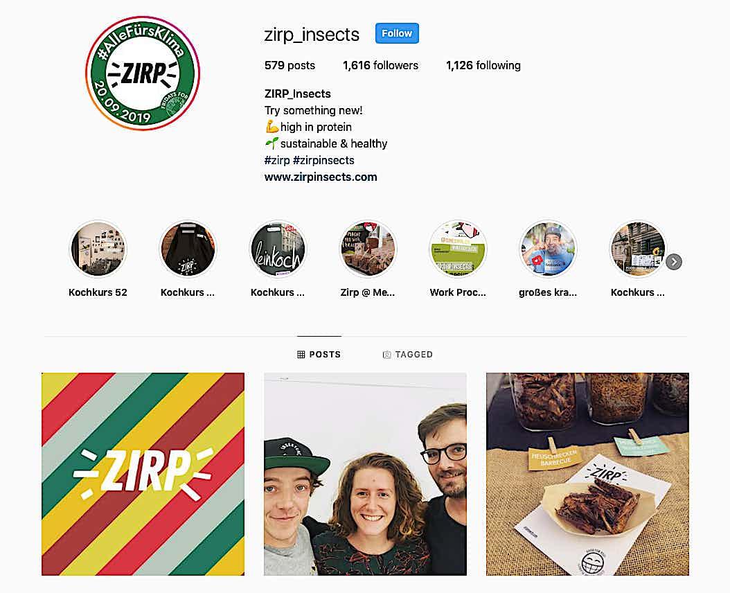 instagram profil zirp_insects
