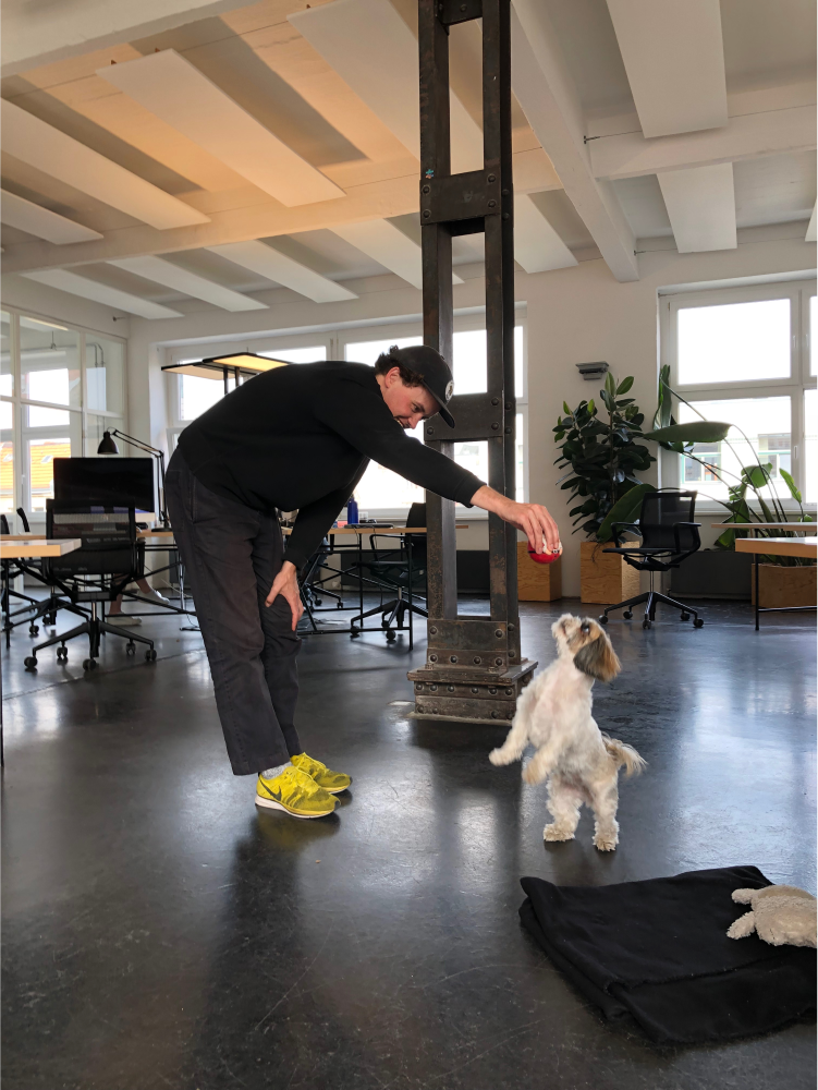 Person playing with a dog in the office.