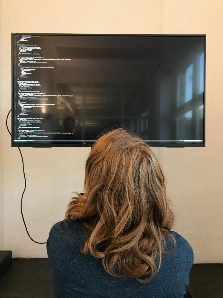 Developer inspecting code