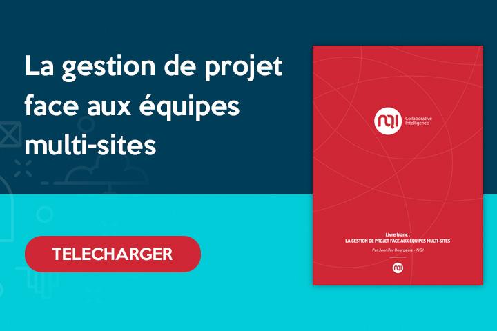 telecharger le livre blanc sur le mode projet et la gestion de projet multisites