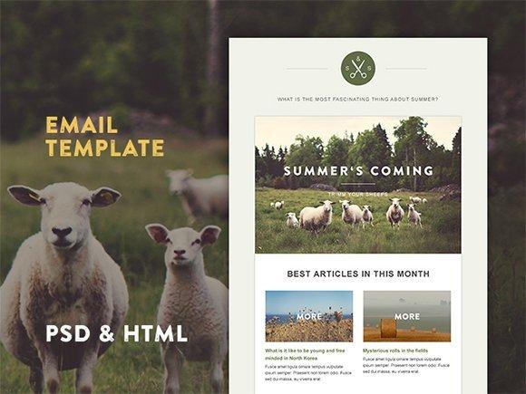 Web Design Ledger: 15 templates célèbres
