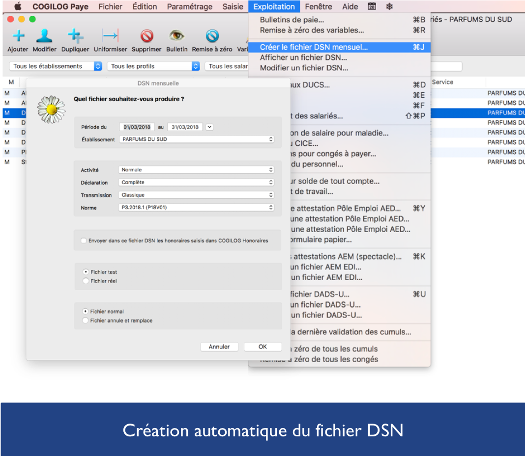 Fichier DSN avec logiciel paie COGILOG Paye
